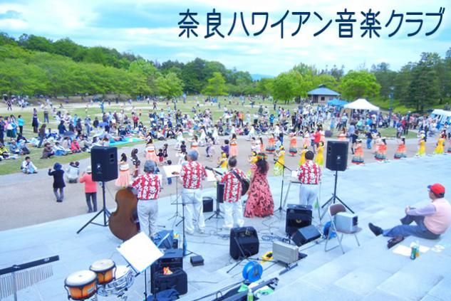 奈良ハワイアン音楽クラブのイメージ