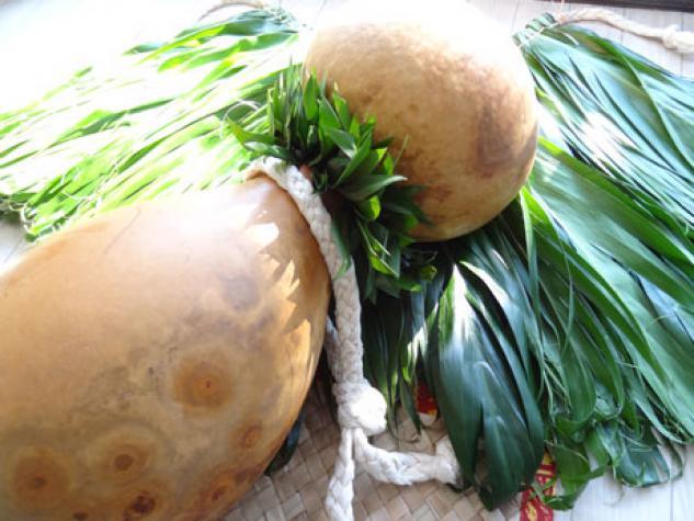 Na Pua O Ka Hoku ナープアオカホークー フラ教室のイメージ