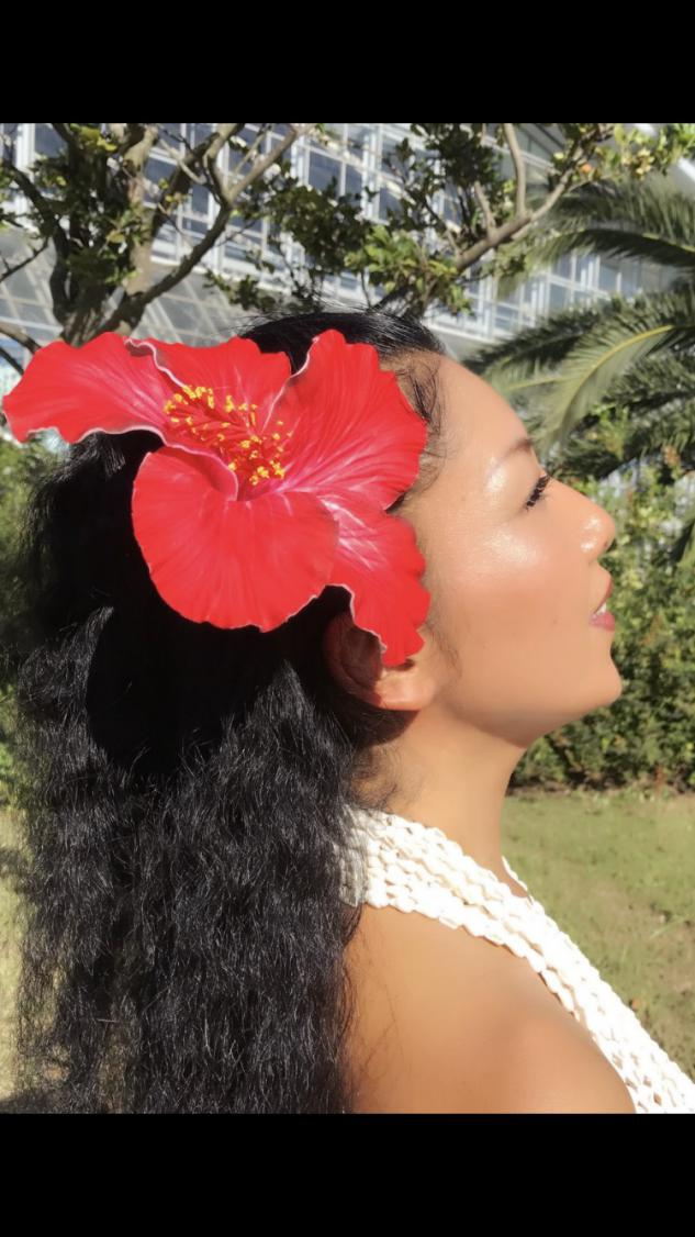 Ohana hula schoolのイメージ