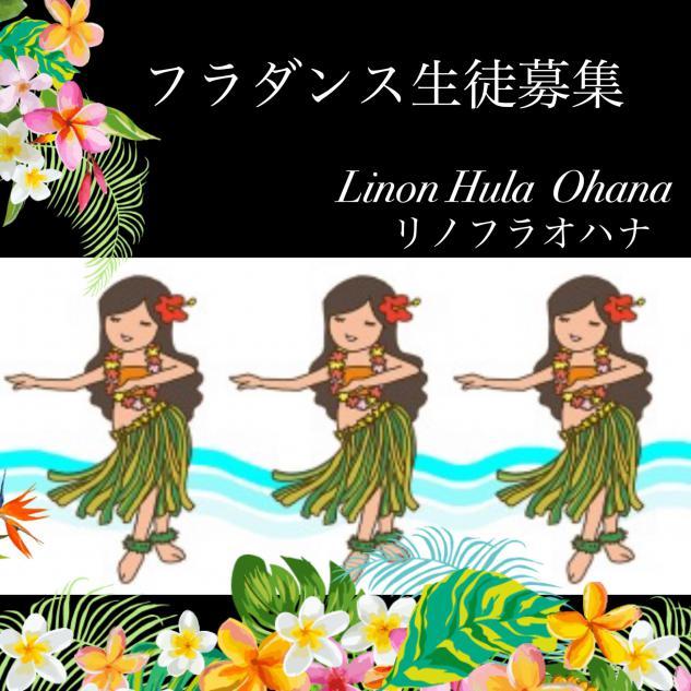 Lino Hula Ohana リノフラオハナのイメージ